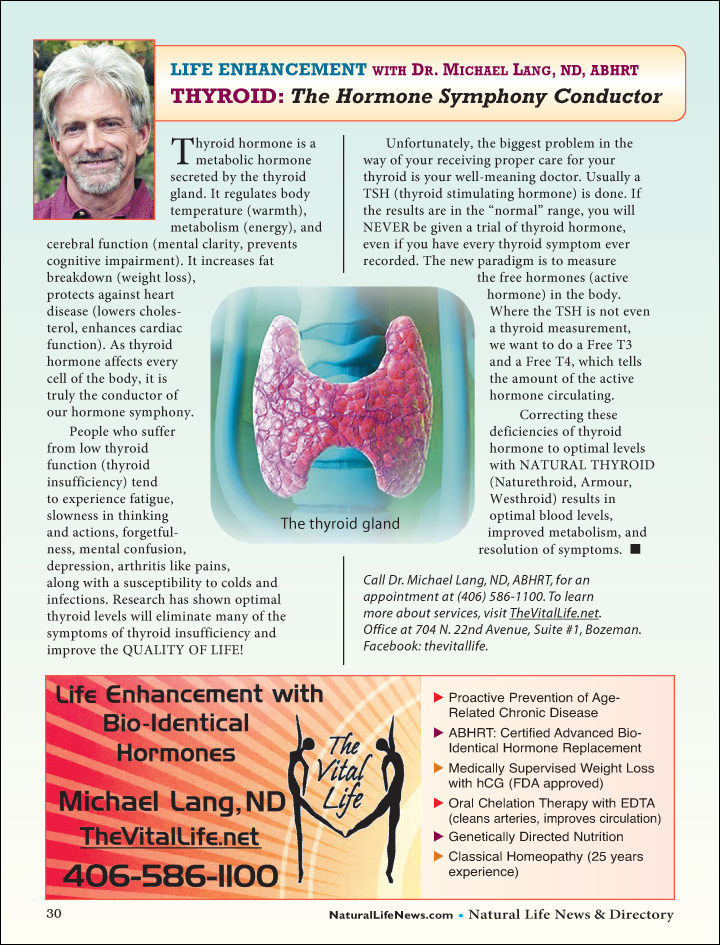 Thyroid Hormone Article